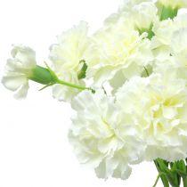 Carnation white 64cm 4pcs