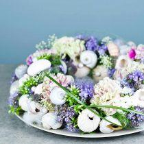 OASIS® floral foam wreath ring green H3cm Ø25cm 6pcs