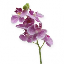Orchid with glitter, pink 35cm