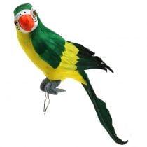 Decorative parrot green 44cm