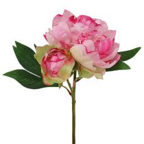 Peonies with bud pink L30cm 2pcs