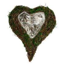 Plant heart as arrangement base 30x35cm H8cm