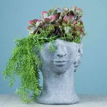 Plant head bust made of concrete for planting gray H23.5cm