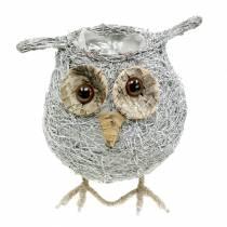 Plant basket owl vine white washed Ø14cm