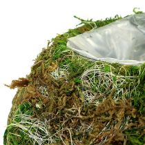 Planter bowl moss bowl Ø18cm 2pcs