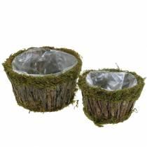 Planter bowl moss / bark round Ø15 / 20cm set of 2