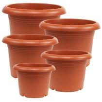 """Plant pot """"Oliver"""" terracotta Ø15cm - 45cm, 1p"""