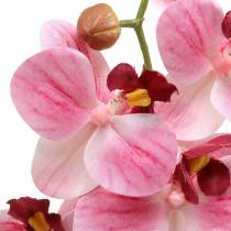 Artificial orchid branch Phaelaenopsis Pink H49cm
