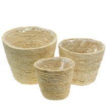 Plant basket natural rattan Ø26 / 22 / 16cm 3pcs