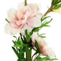 Larkspur Delphinium light pink L95cm