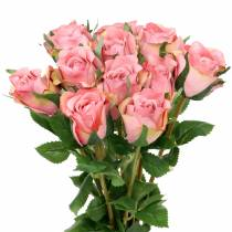 Rose old rose 42cm 12p