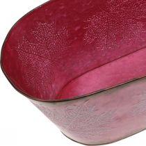 Bowl with leaf decoration, planter, autumn decoration, metal pot wine red L38cm H15cm