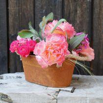 Metal bowl with handles, autumn decoration, planter with patina L22cm H11cm