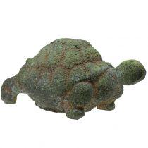 Garden figurine turtle mossy 30cm x 18cm H15cm