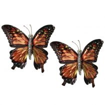 Butterflies with clip brown 6pcs