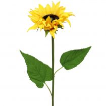 Long stemmed sunflower yellow 53cm