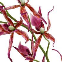 Spider orchids pink-orange 108cm 3pcs