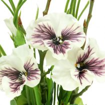 Pansy with moss ball white 31cm
