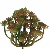 Succulent plant artificial green 14cm