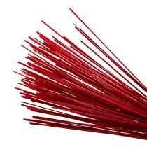 Tonkin red 70cm - 80cm 150p.