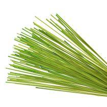 Decorative sticks Tonkin 70cm light green 150p