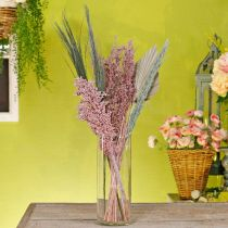 Dried flowers exotic white-pink mix drying bouquet set