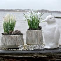Planter vase concrete wood design Ø15cm