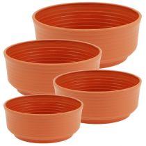 Z-bowl plastic Ø 16cm - 22cm 10 pcs