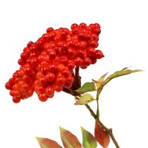 Branch with berries orange 53cm