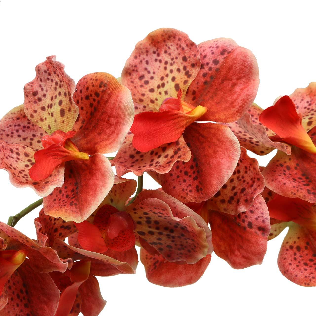 Artificial orchid Phaelaenopsis Red, Orange H81cm