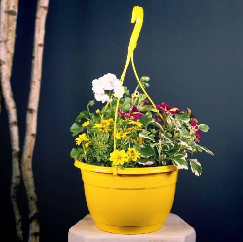 Flower basket Ø25cm terracotta