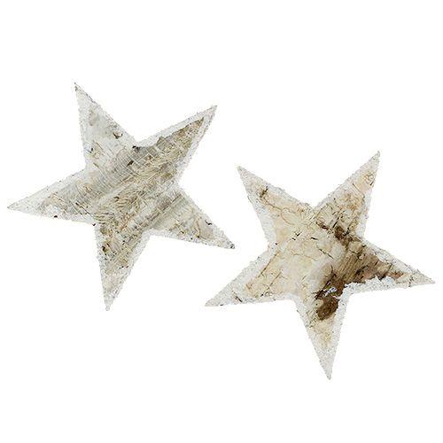 Birch stars natural snow-making 9cm 15pcs