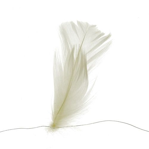 Feather on wire cream 10m