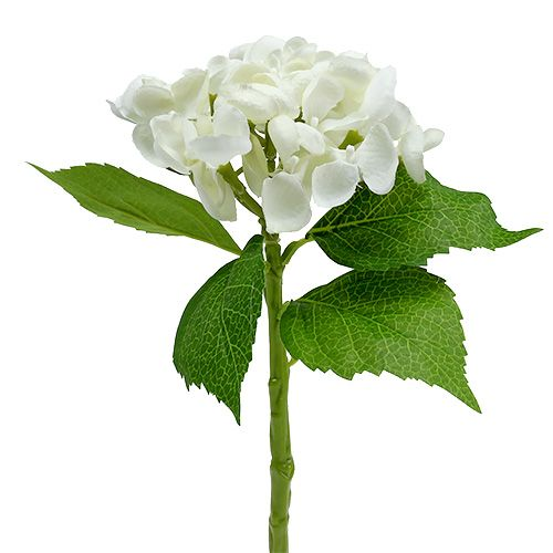 Hydrangea 33cm white 1p