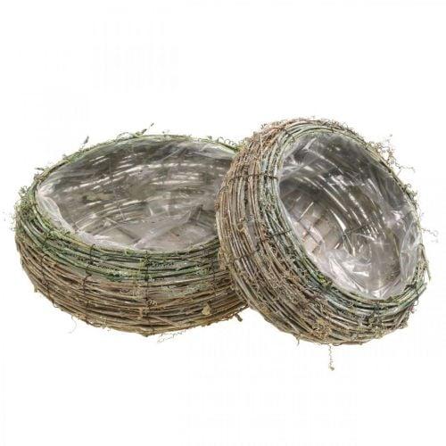 Plant basket round two-tone vine, wood Ø18 / 25cm, set of 2