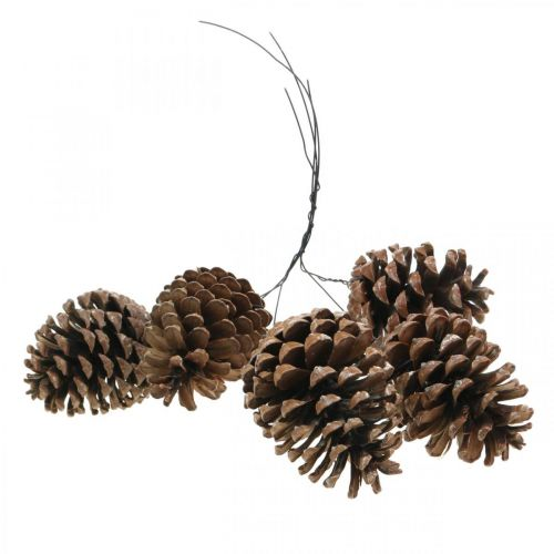 Maritime cones with wire, memorial days, Christmas decorations, natural product H8–13cm Ø6–9cm 50pcs