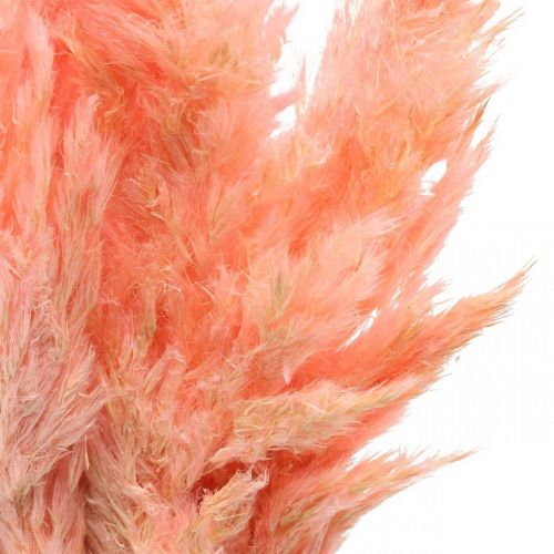 Pampas grass dried pink dry flowers 65-75cm 6pcs in a bunch