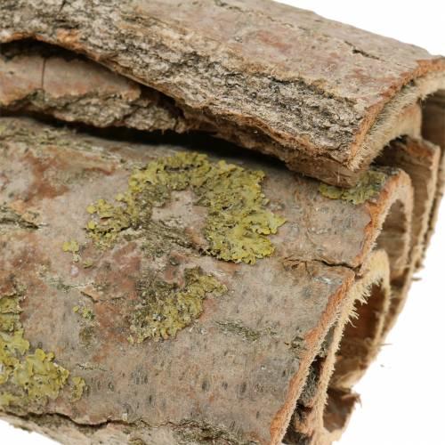 Tree bark for handicrafts natural 13cm 1kg